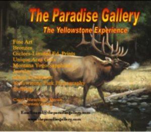 Paradise Gallery
